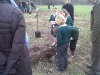 diamond-jubilee-tree-planting-this-ground-is-stoney