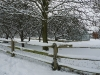 Fence and Rail in Winter