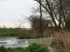 Cannic Pond