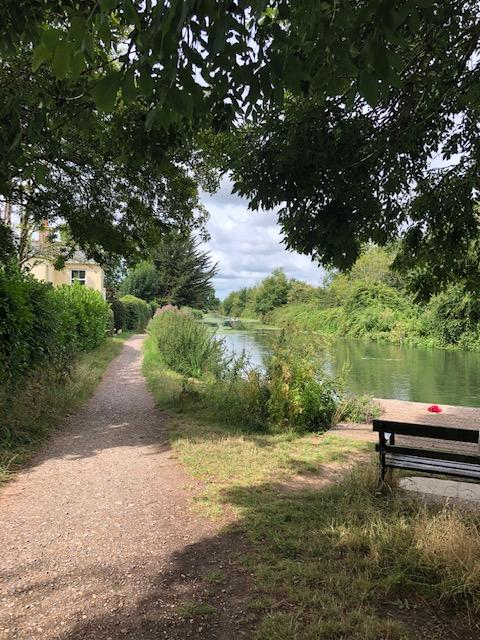 Chichester canal towpath looking west there is a bench to sit on which is overlooking the water and is in the shade of tree
